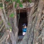 wat-bang-kung-samut-sangkhorm_46830217735_o
